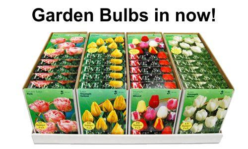 gardenbulbs